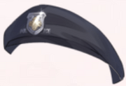 Federal Police Hat