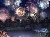 Summer Firework
