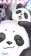 Panda Brawler close up 3