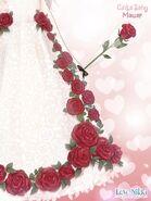 Rose Romance close up 2
