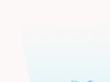 Momo Communication