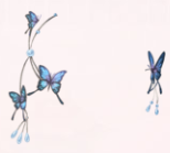 Butterfly Antenna-Night