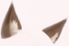 Dark Brown Wolf Ears
