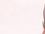 Deer and Brook