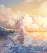 Caelum et Ocean 5