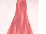 Dancer's Veil