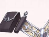Assassin's Belt-Rare