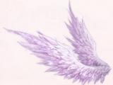 Dream Wings