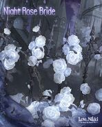 Night Rose Bride close up 4