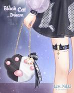 Black Cat Dream 2