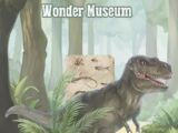 Wonder Museum