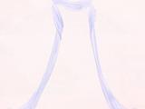 Luster Brocade