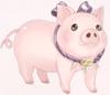 Goofy Cute Piggy