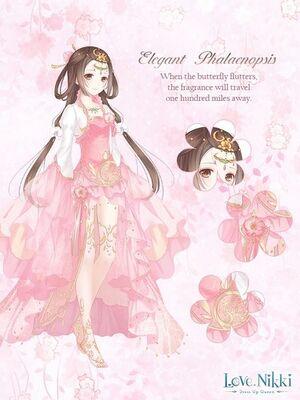Elegant Phalaenopsis-Pink
