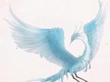 Blue Phoenix's Letter