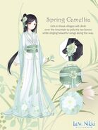 Spring Camellia
