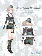 Northern Soldier