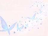 Butterfly in Dream