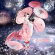 Sakura in Dream