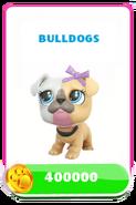 LittlestPetShopPetsPricesBulldogs