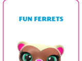 Fun Ferrets