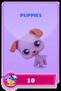 LittlestPetShopPetsRequiredPetsPuppies