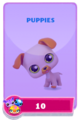 LittlestPetShopPetsRequiredPetsPuppies.png