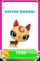 LittlestPetShopPetsPricesBostonTerriers.png