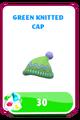 LittlestPetShopGreenKnittedCap.png