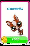 LittlestPetShopPetsPricesChihuahuas