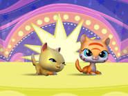 LittlestPetShopPetsQuirkyKittiesYellowOrangeTogether