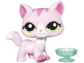 1788 Pink Cat1 enl
