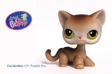 Littlest Pet Shop -19