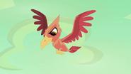 Angry Pterodactyl