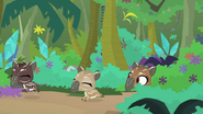Tapirs come out