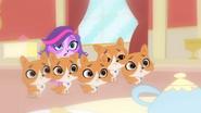Zoe&Doges