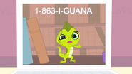 I-GuanaPhoneNumber