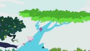 Treetop appears