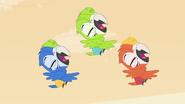 Macaws dance in air
