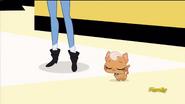 MeowMeowLandsOnHisPaws
