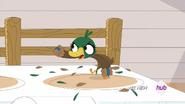 AngryDuck