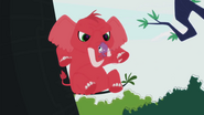 Red Elephant appears