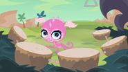 Minka-dinga-belly-ringa-dimple-dunkasaurus