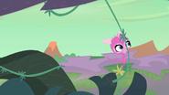 Minka swinging