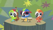 The Macaw Jazz Trio