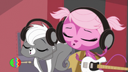 Pepper and Minka vocalizing