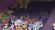 Pet Crowd 1