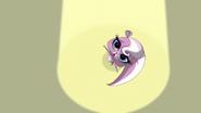 Mitzi spins