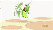 Master Hop startled