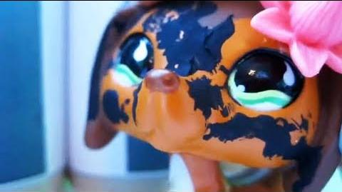 Littlest Pet Shop Popular (Episode 5 Calories and Competition)